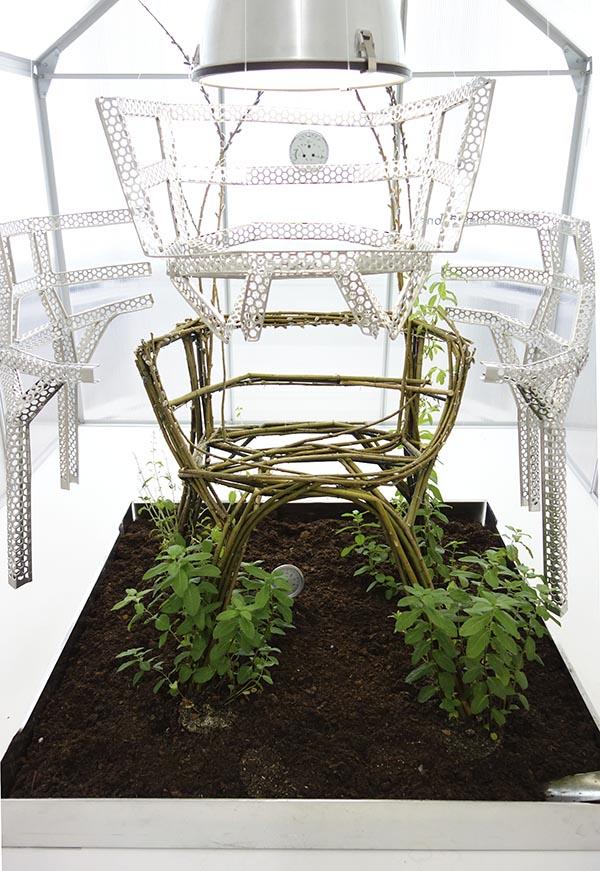 Chair Farm Aisslinger : Werner aisslinger grow your own chair eu
