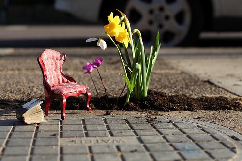 Pothole Guerilla Gardener